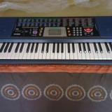 Orga electrica Casio CTK 501