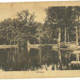 SIBIU-WALDSEE. - Carte Postala Romania 1904-1918