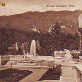 Romania, Sinaia, carte postala circulata 1920: Terasa Castelului Peles - Carte Postala Muntenia 1904-1918, Fotografie