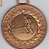 Medalii Romania - Medalie-CUPA TINERETULUI DE LA SATE 1971 OINA locul III