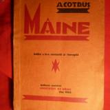 Carte Editie princeps - Aron Cotrus - Maine - ed. 1928, Ed IIa