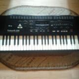Orga - Instrumente muzicale