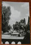 carte postala  RPR JUDETUL SATU MARE - VEDERE DIN PARC - NECIRCULATA
