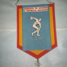 371 Fanion Federatia de Atletism a Republicii Moldova - Fanion atletism