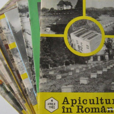 APICULTURA IN ROMANIA, colectie completa pe anul 1982 (stuparit, albinelor, stuparului, albinarit) 8 lei/revista
