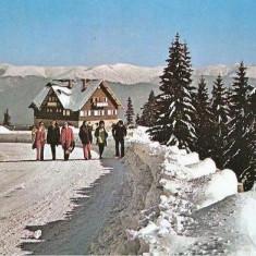 CP 211-32 Sinaia -Cabana Bradet (Cota 1300) -necirculata -starea care se vede - Carte Postala Muntenia dupa 1918