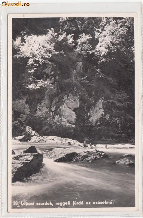 B11205 Targu Lapus peisaj  necirculata foto mare