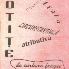 Blaga, A. - SINTAXA FRAZEI, ed. Stadiform, Marghita, 1999 - Manual scolar Altele, Romana