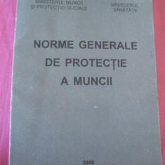 NORME GENERALE DE PROTECTIA MUNCII - ANUL 2000 . - Carte Dreptul muncii