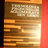 V.Istrate - Tehnologia Prod. Aglomerate Lemn -1983 - Carti Constructii