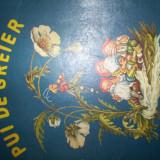 PUI DE GREIER/ CU ILUSTRATII= DOMNITA GEORGESCU MOLDOVEANU - Carte educativa