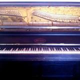 Pianina Schoneck Germania