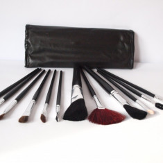 Set 12 PENSULE + HUSA trusa de machiaj profesionala, fard PE2 - Pensula make-up