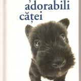 Carte hobby - (C3972) ACESTI ADORABILI CATEI, CARTI IN DAR, EDITURA HELEN HEXLEY