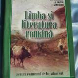 LIMBA SI LITERATURA ROMANA PENTRU EXAMENUL DE BACALAUREAT,  Editura Art, 206 pagini (rezolvari, solutii, bareme, sugestii, observatii) - stare buna!