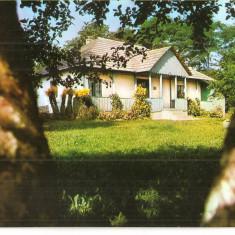 Carti Postale Romania dupa 1918, Necirculata, Fotografie - CPI (B3021) LIVENI, JUDETUL BOTOSANI, CASA MEMORIALA