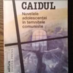 Nuvela - Carte - Mihai Radulescu - Caidul - Nuvelele adolescentei in temnitele comuniste
