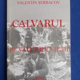 Istorie - VADIM PIROGAN / VALENTIN SERBACOV - CALVARUL * PE VALURILE VIETII - BUCURESTI - 2007