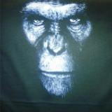 Tricouri personalizate unicat - Tricou barbati, Marime: L, Culoare: Nero, Maneca scurta, Bumbac