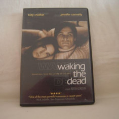 Vand DVD original-Waking The Dead, original - Film comedie Altele, Engleza