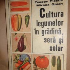 Cultura legumelor in gradina, sera si solar-Z.Suciu, T.Plesca, M.Goian