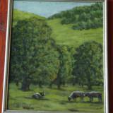 Tablou cu rama - peisaj - panza pe carton - semnat G. Dumitru - aproape de Brasov !!!!, Peisaje
