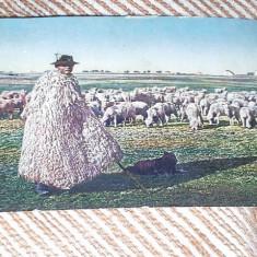 1916 CIOBAN ROMAN DIN ARDEAL NECIRCULATA - Carte Postala Transilvania pana la 1904