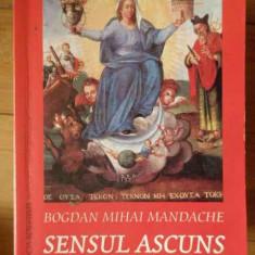 Sensul Ascuns Dialoguri Despre Esoterism - Bogdan Mihai Mandache, 302381 - Carte Hobby Paranormal