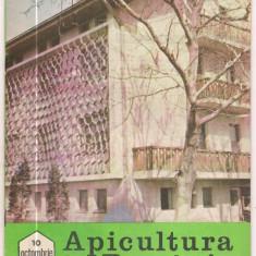 Revista/Ziar - 5A(000) revista-APICULTURA IN ROMANIA octombrie 1989