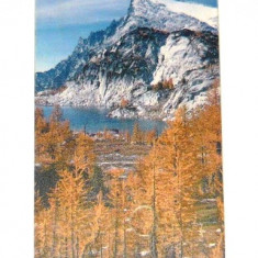 Cartela telefonica - PEISAJ - NATURA - ZAPADA - PEISAJ MONTAN - 2001 - 2+1 gratis pt produse la pret fix - RBK4347 - Cartela telefonica romaneasca