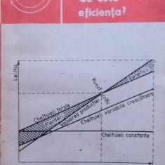 CE ESTE EFICIENTA - Ion Camasoiu, Camelia Camasoiu - Carte Hobby Dezvoltare personala