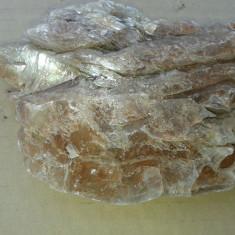 Fosila roca, Naturala - Floare de mina de colectie REDUCERE