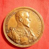 Medalia Expozitiei Nationale 1885 Budapesta, Patron Print Rudolf, Insula Knops