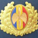 Emblema militara 7 (ofiter aviatie, aviator)
