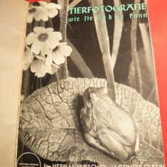H.Fischer .G.Olberg -Fotografii Artistice cu Animale Salbatice- ghid pt. amatori -1939