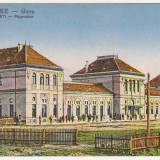 Satu Mare, Gara, necirculata, animatie, cca 1917 - Carte Postala Crisana 1904-1918