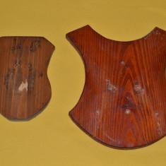 Set doua panoplii din lemn masiv / Panoplie vanatoare / Panoplie trofeu cerb / caprior / Trofeu lemn