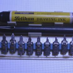 Trusa set desen caligrafie grafica marcant... pelican, graphos penite scris
