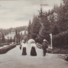 Romania, Baile Tusnad carte postala necircul. apr.1915: Promenada princip, animat, Necirculata, Fotografie