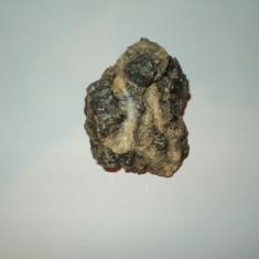 Fosila roca, Naturala, Cuart - Floare mina Cuart fumuriu in calcit