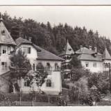 Carte Postala, Circulata, Printata, Sangeorz Bai - Bnk cp Sangeorz Bai - Pavilioanele nr 1 si 2 - circulata