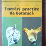 Carte Biologie - E0 LUCRARI PRACTICE DE BOTANICA - M. Andrei, I. Anghel, I. Popescu, E. Stoica
