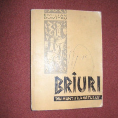 EMILIAN DUMITRU--BRIURI DIN MUNTII BANATULUI - Carte Arta populara