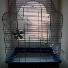 Colivie pentru papagali!