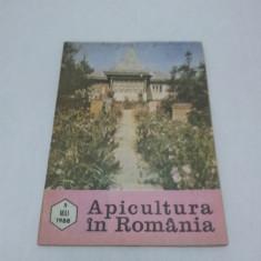 Revista/Ziar - REVISTA APICULTURA ÎN ROMÂNIA NR. 5-MAI 1988