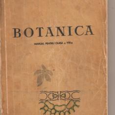 (C5910) BOTANICA. MANUAL PENTRU CLASA A VIII-A, AUTORI: ION CIOBANU, 1961 - Carte Biologie