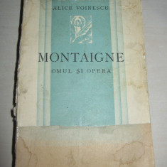 Carte de lux - ALICE VOINESCU -MONTAIGNE// EXEMPLAR NR 4, NEPUS IN COMERT