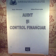 Petre Brezeanu - Audit si control financiar - Carte despre fiscalitate