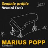 MARIUS POPP Seminte PrajiteRoasted Seeds (cd)