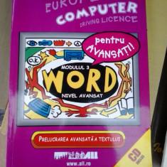 WORD NIVEL AVANSAT MODULUL 3 - Carte software